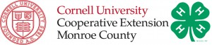 Cornell-4H